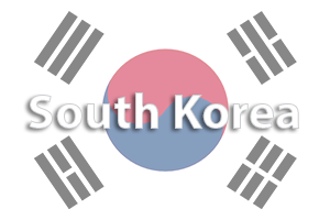 medical tourism south korea